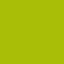 80-449 Glossy Lime Green 1,22 m x 50 m
